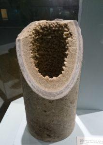 Асбестоцементная канализационная труба